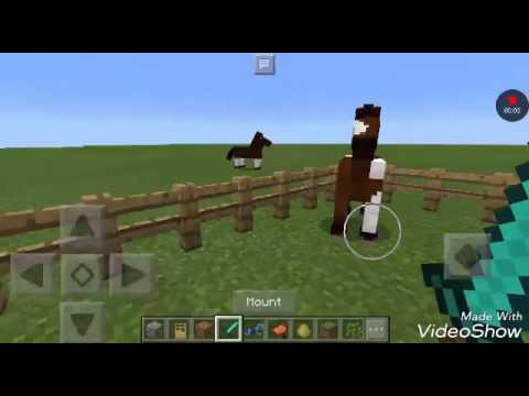 HOW TO TAME AND RIDE A HORSE IN MINECRAFT PE 1.0!!! ~ ~ ~