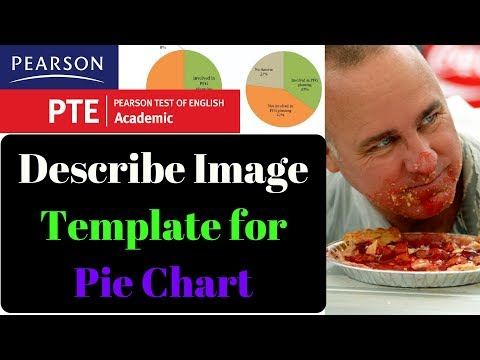PTE Describe Image Template for Pie Chart