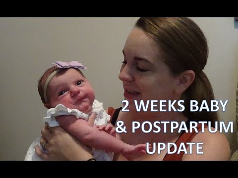 2 WEEK BABY AND POSTPARTUM UPDATE | Annabelle Carolyn