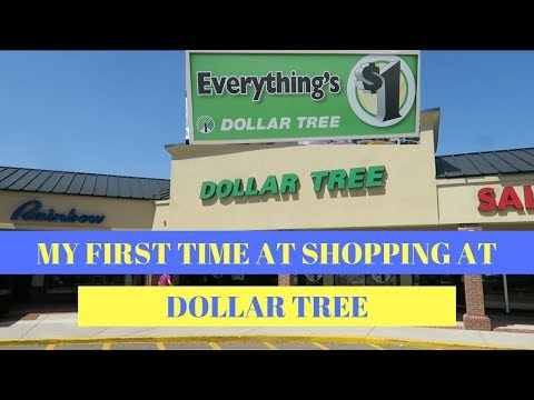 1st Time Dollar Tree Shopping for Ebay & Amazon selling Supplies!
