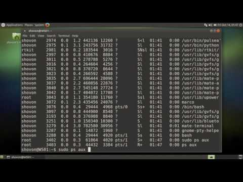 See The Users that have Running Processes on Linux System