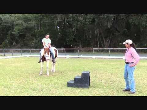 Re-starting the unconfident riding horse, part VI