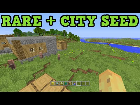Minecraft Xbox 360 / PS3 Seed: free RAREST ENCHANTMENT & City Seed
