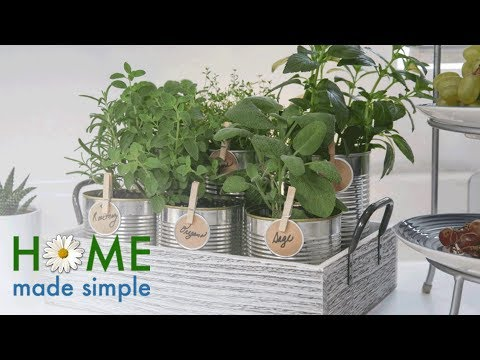 A Recycled Herb Garden to Add Vibrancy to Any Kitchen | Home Made Simple | Oprah Winfrey Network
