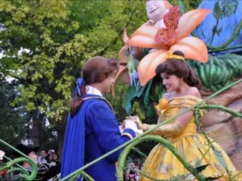 Cheap Disneyland Tickets -  Disney Package Deals