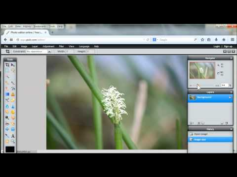 How to crop an image to an exact size with Pixlr