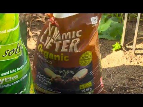 The Garden Gurs - Building Up Sandy Soils