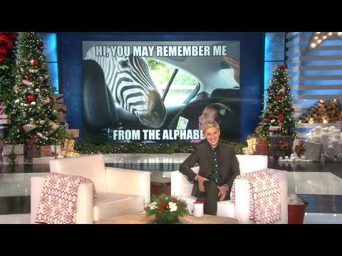 Ellen's Winter Mood Booster