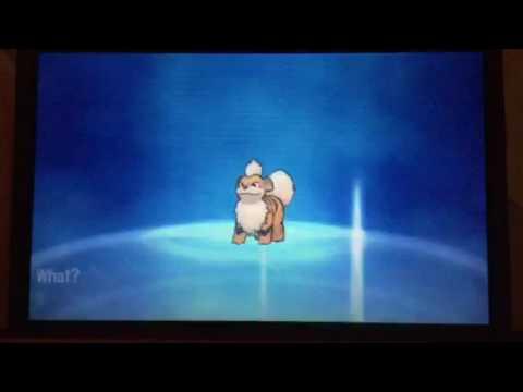 Using Fire Stone on Growlithe in Pokemon Moon
