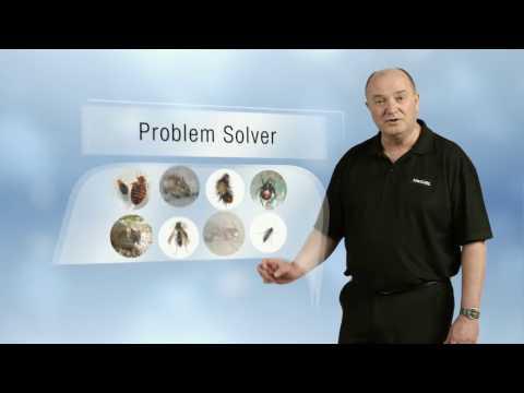 Kiwicare Ants Problem Solver TVC