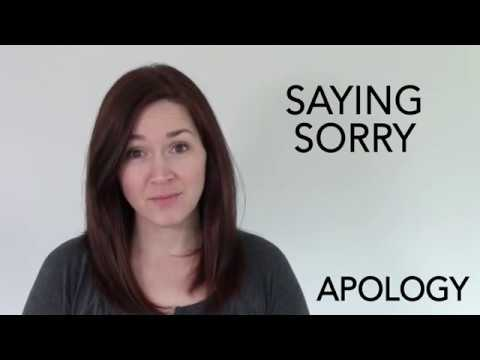 Apology - Spotlight's Word of the Day
