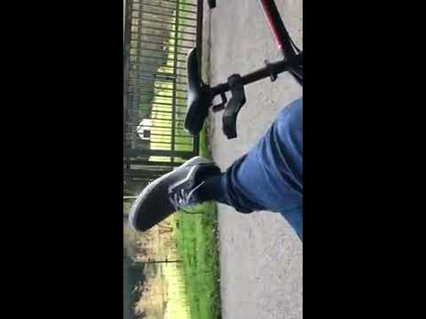 Shoeplaying with my very new grey vans during a break on my bike