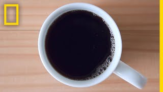 Caffeine 101 | National Geographic