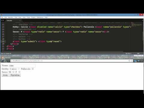 Form e Radiobutton in HTML