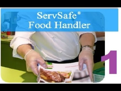 [STREAM] ServSafe Food Handler Course and Assessment (GONE WILD) - Part 1