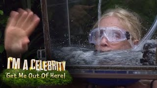 Helmets of Hell Challenge Gets All Too Much For Lady C | I