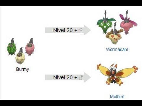 Pokemon Platino - Como Evolucionar A Burmy En Wormadam (Hembra) Y Mothim (Macho)