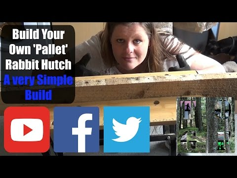 How To Build A Simple 'Pallet' Rabbit Hutch Part One | A Beginners Guide | Simple Woodworking Tips |