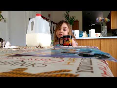 Cinnamon milk (horchata)