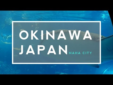 Okinawa Japan Travel Tips & Experience Part 1