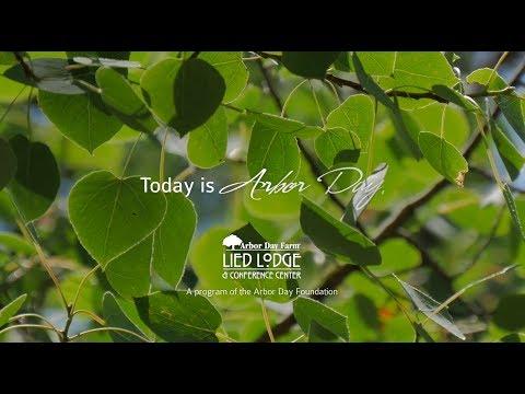 Happy Arbor Day 2018