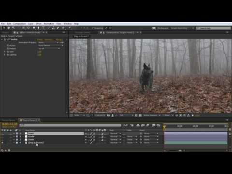 How to Easily Create a LUT With Adobe After Effects or Premiere Pro