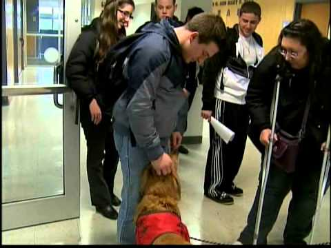 Therapy Dogs Help College Students De-Stress During Final Exams