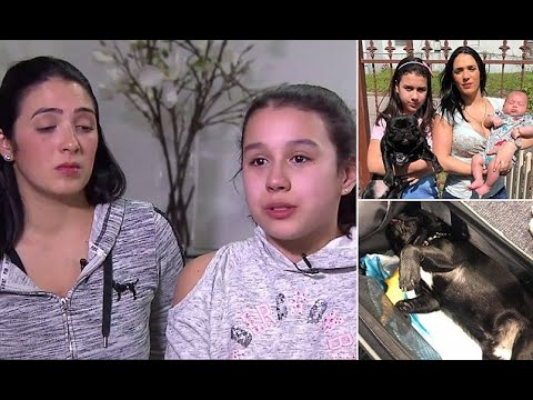 Tearful 11-year-old speaks about her dog's death on United flight