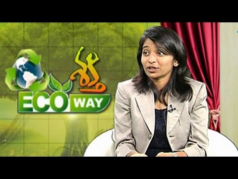 Sowmya Damini - To Control Environmental Pollution