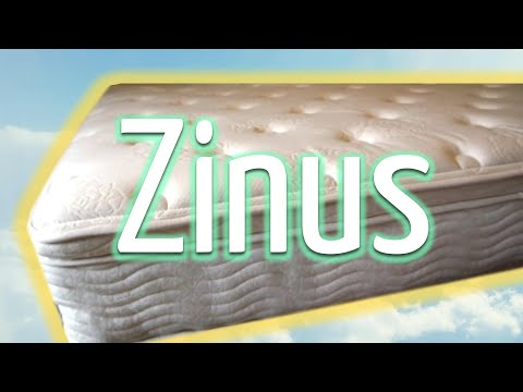 Zinus (Sleep Revolution): Sleep Master / Night Therapy Mattress 12