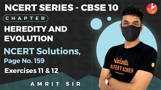 Heredity and Evolution L13 | NCERT Solutions - Pg 159 (Ex - 11, 12) | CBSE 10 Biology | Vedantu