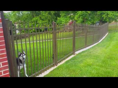 No-Dig Dog Fence ~ The Fence for Dogs that Dig! - Outdoor Living Expert