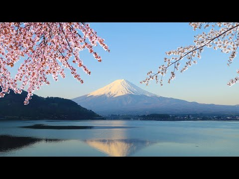 Tokyo Japan - Mt Fuji, Lake Ashi and Bullet Train Day Trip