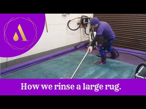 How to clean a large rug. Flushing a large machine made rug.