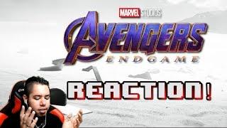 Download Avengers: Endgame Trailer 2 REACTION! | HMK Video