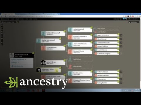 Genetic Genealogy Brick Wall Case Study | AncestryDNA