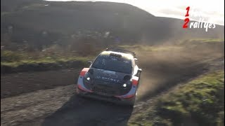 WRC Wales rally 2017 - Leg 1 Flat out