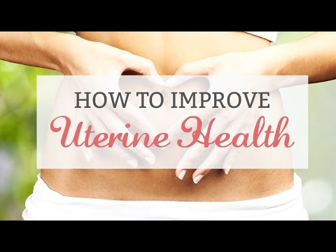 How to Improve Uterine Health.