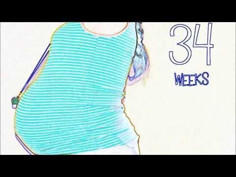Surrogacy Belly Progression Video