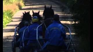 Jan-Olof Persson berättar om träning av travhästar