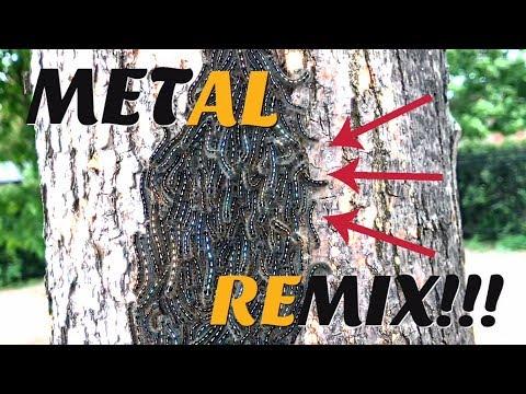 PUPATING CATERPILLAR DEATH METAL REMIX!!!