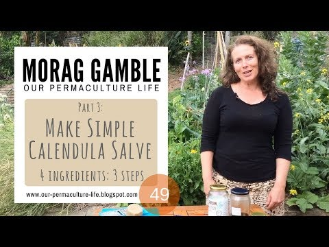 Make Simple Calendula Salve with Morag Gamble, Our Permaculture Life