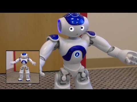 WFL RobotDanceContest2017