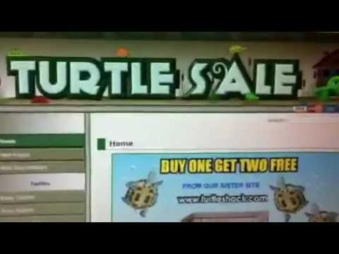 Good and Bad websites to buy turtles and tortoises (part 2)