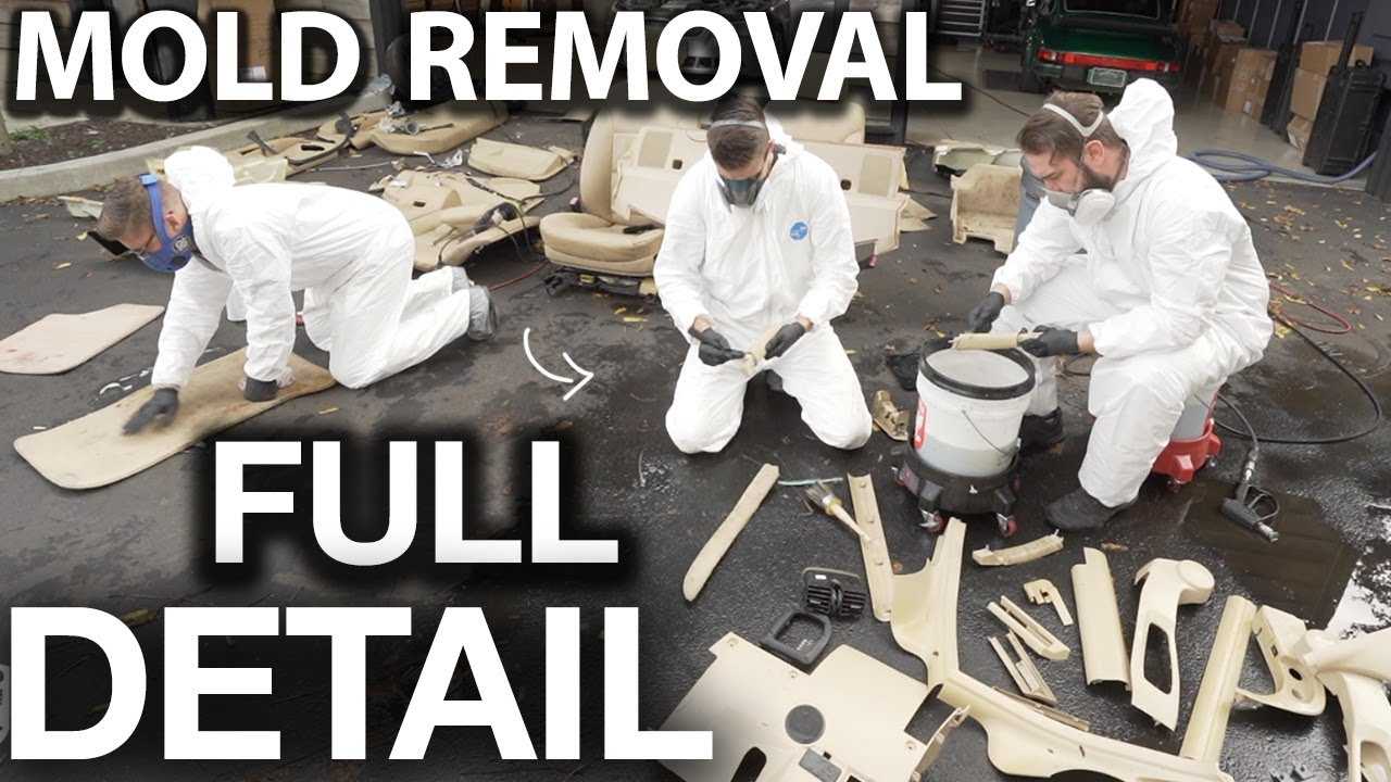 Dirtiest Car Ever! BMW Full Interior Removal and Detail BMW 5 Series