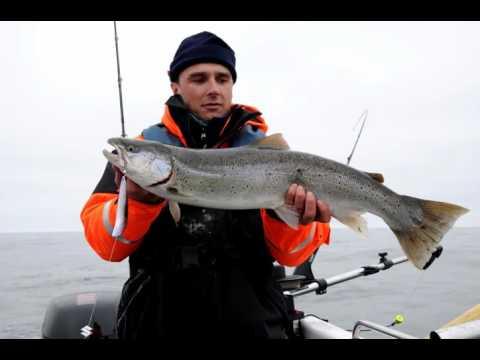Ep  203 Mark Bowler, Sea Trout