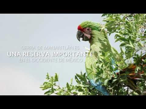 Sierra de Manantlán: conservación y desarrollo comunitario