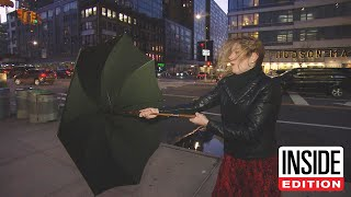 Is This $350 Umbrella Really Indestructible?