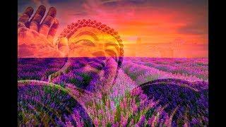 528 Hz & 432 Hz ➤ Miracle Healing Tones | Raise Your