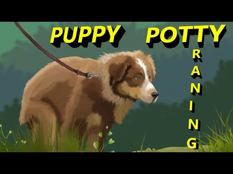 How To Puppy Potty Training Indoor and Outdoor In Easiest Way 2017 in English | SMART DOGS TRAINING